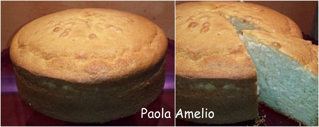 Paola - Plumcake-Torta allo yogurt