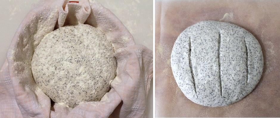 Lievitazione pane al papavero