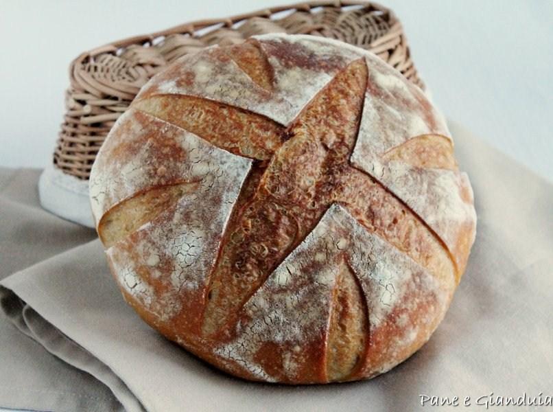 Pane di grano Cappelli e farina 1