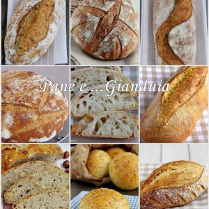 ricette pane con pasta madre