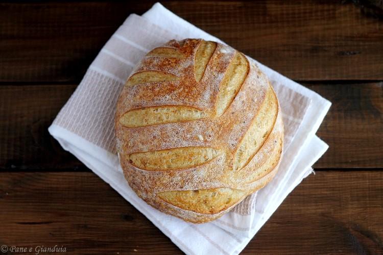 Pane di semola e semi di canapa