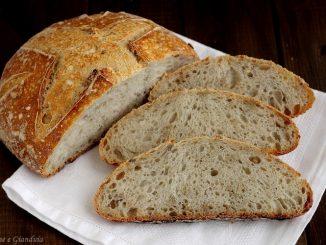 Pane di grano tenero con semi di girasole