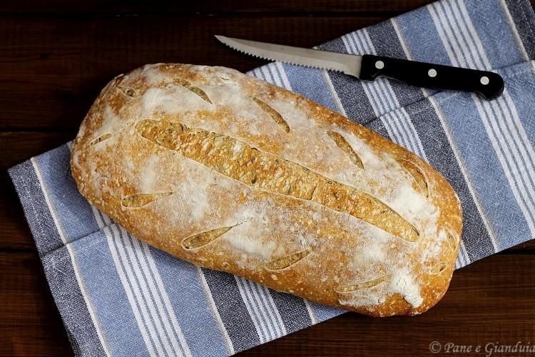 Pane bianco ai semi di finocchio
