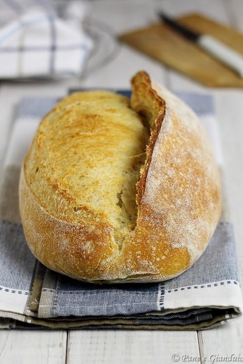 Pane con la cresta
